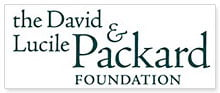 new packard logo