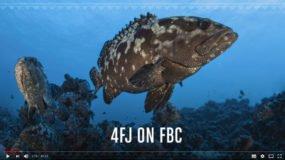 4FJ on FBC Na Vakekeli Show